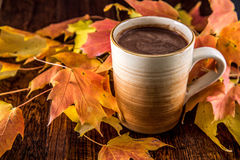Chocolate caliente en la caída Fotografía de archivo libre de regalías