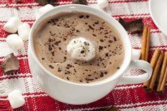Chocolate caliente gastrónomo Fotografía de archivo libre de regalías