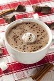 Chocolate caliente gastrónomo Imagen de archivo libre de regalías