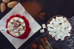 Chocolate caliente hecho en casa de la Navidad con la melcocha, el canela y especias en el fondo oscuro, visión superior Foto de archivo