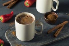 Chocolate caliente mexicano picante del día de fiesta hecho en casa Imagen de archivo libre de regalías
