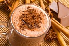 Chocolate caliente y especias Fotos de archivo libres de regalías