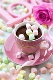 Chocolate caliente y melcocha Foto de archivo libre de regalías