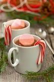 Chocolate caliente y melcocha Imagen de archivo libre de regalías