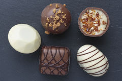 Chocolate Candies. An assortment of fine chocolate bon bons Stock Photography