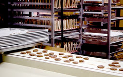 Chocolate candies on a conveyor Royalty Free Stock Photography