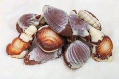 Chocolates on background granulated sugar royalty free stock image