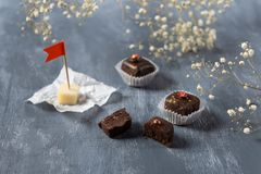 Chocolate candies with goat cheese on grey background. Delicious candies for gourmet royalty free stock photo