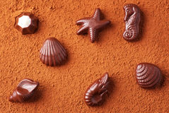 Chocolate candies on sea subjects on cocoa powder Stock Photography