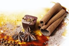 Chocolate candy. Isolated with anice and cinnamon Stock Image