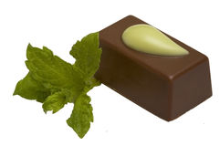 Chocolate  candy with mint, isolated. In the white background Royalty Free Stock Photo