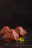 Chocolate candy and mint leaves Royalty Free Stock Images