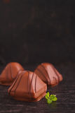 Chocolate candy and mint leaves Royalty Free Stock Image