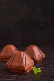 Chocolate candy and mint leaves Stock Photo
