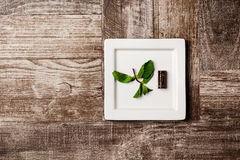 Chocolate candy and mint on white plate over wooden background. Above. Royalty Free Stock Photography
