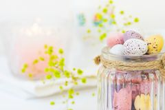 Chocolate Candy Multi-Colored Small Quail Easter Eggs Pastel Colors in Vintage Glass Jar on White Wood Table Yello Flowers Stock Photography