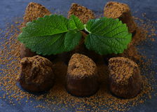 Chocolate candy truffle with cocoa Stock Photo