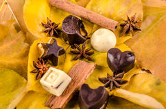 Chocolate candy white and black, hearts, figurines and cinnamon Royalty Free Stock Images
