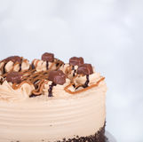 Chocolate Caramel Cake Stock Photography