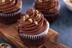 Chocolate caramel cupcake with nuts Royalty Free Stock Photography
