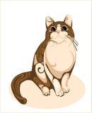 Chocolate cat. Illustration  of  beautiful domestic  cat Royalty Free Stock Image