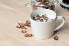 Chocolate cereal cornflakes and milk for breafast Royalty Free Stock Images