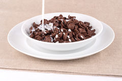 Chocolate cereal with milk. Royalty Free Stock Photos
