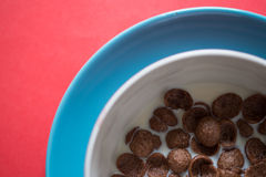 Chocolate cereal with milk Royalty Free Stock Image