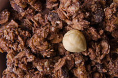 Chocolate cereals Royalty Free Stock Photos