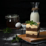 Chocolate cheesecake with vanilla filling Stock Photos
