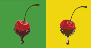 Chocolate Cherry. Two cherries dipped in melted chocolate Stock Photos