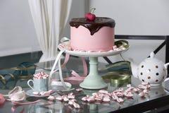 Chocolate Cherry Cake Surrounded por las hierbabuenas fotografía de archivo