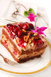 Chocolate and cherry cake with walnuts Royalty Free Stock Image