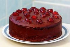 Chocolate and cherry cake. Royalty Free Stock Photo