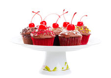 Chocolate Cherry Cupcakes Stock Images