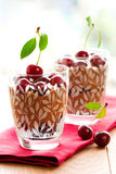 Chocolate cherry dessert royalty free stock photo