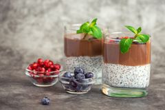 Chocolate chia pudding in glass on grey background. With copy space royalty free stock photography