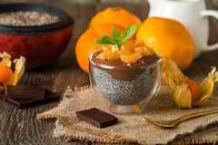 Chocolate chia seed pudding in glass bow Royalty Free Stock Image