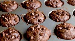 Chocolate chip Banana Muffins. In cupcake metal tin Stock Photos