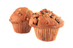 Chocolate chip and banana nut muffins Stock Image