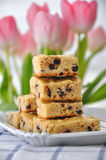 Chocolate Chip Blondies. Freshly baked chocolate chip blondies with tulips Royalty Free Stock Images