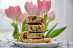 Chocolate Chip Blondies Royalty Free Stock Photos