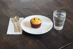 Chocolate chip Breakfast muffin Royalty Free Stock Photography