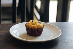 Chocolate chip Breakfast muffin Stock Images