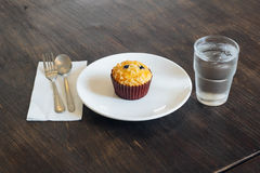 Chocolate chip Breakfast muffin Royalty Free Stock Photos