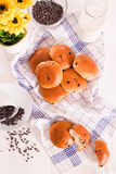 Chocolate chip brioche. Chocolate chip brioche bun on wooden table royalty free stock image