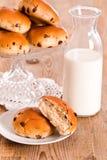 Chocolate chip brioche. Stock Photography