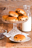 Chocolate chip brioche. Stock Images