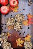 Chocolate Chip Carmel Apples royalty free stock photos