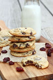 Chocolate Chip Cherry Cookies Imagem de Stock Royalty Free